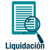 Consulta Liquidacion